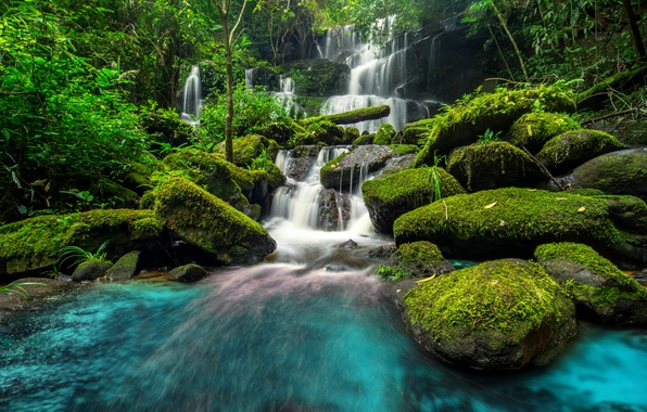 Картинка лес, река, водопад, forest, river, jungle, beautiful, waterfall, tropical