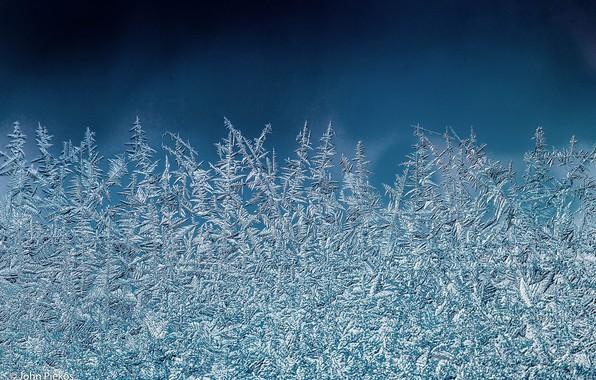 Картинка иней, стекло, макро, узор, мороз
