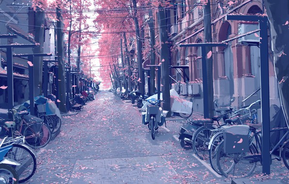 Картинка мотоциклы, улица, столбы, провода, брусчатка, лепестки, art, велосипеды, цветение весной, безлюдная, Xi Chen Chen, мопеды