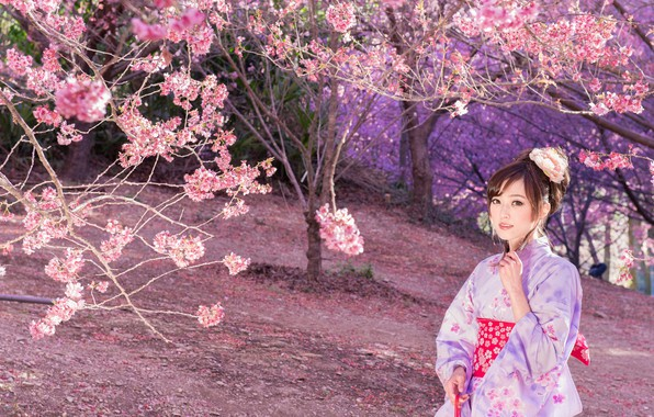 Картинка Природа, Девушка, Деревья, Сакура, Азиатка, Наряд