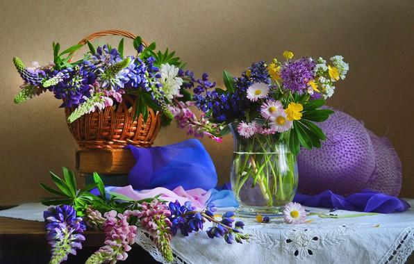 Картинка лето, цветы, июнь, люпин