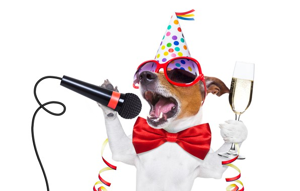 Картинка собака, Новый Год, очки, new year, шампанское, happy, Happy New Year, party, dog, 2018, funny, …