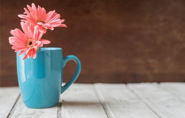 Картинка цветы, кружка, wood, pink, flowers, хризантема, mug
