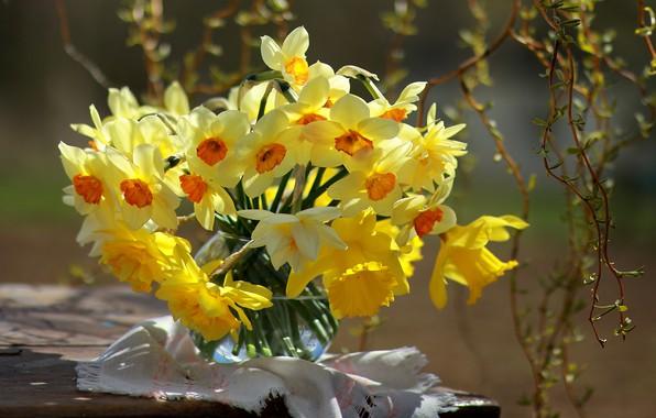 Картинка цветы, ветки, весна, ваза, салфетка, нарциссы