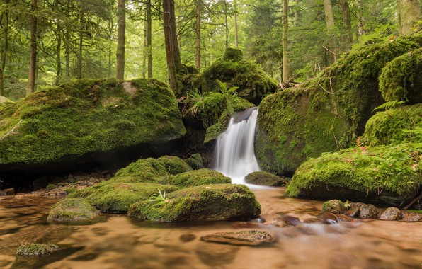 Картинка лес, камни, водопад, мох, Германия, речка, Germany, Баден-Вюртемберг, Baden-Württemberg, Black Forest, Шварцвальд, Gertelbach Falls