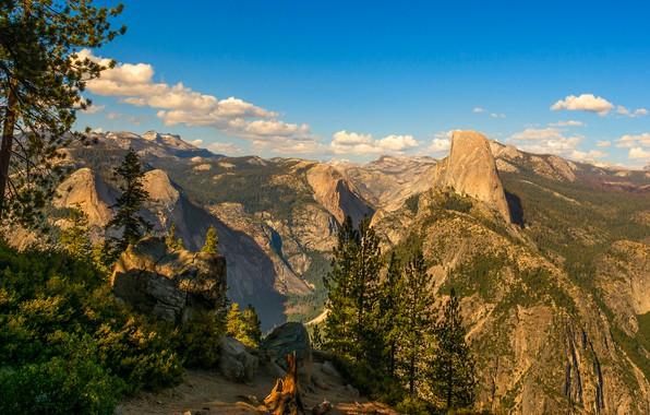 Картинка лес, небо, солнце, облака, деревья, горы, камни, скалы, высота, панорама, США, Йосемити, кусты, вид сверху, …