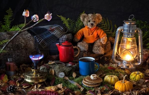 Картинка листья, игрушка, лампа, мох, ветка, чайник, кружка, фонарь, тыквы, медвежонок, плед, папоротник, компас, вафли, плюшевый …