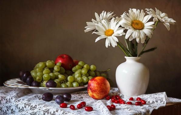 Картинка цветы, стол, яблоки, ромашки, тарелка, виноград, ваза, натюрморт, сливы, скатерть