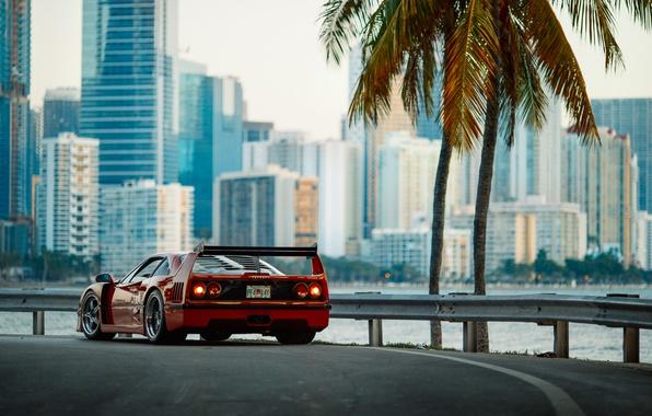 Картинка город, утро, фотограф, Ferrari, F40, Florida, Маями, Larry Chen