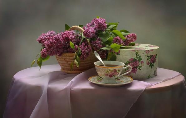 Картинка цветы, чай, букет, натюрморт, сирень