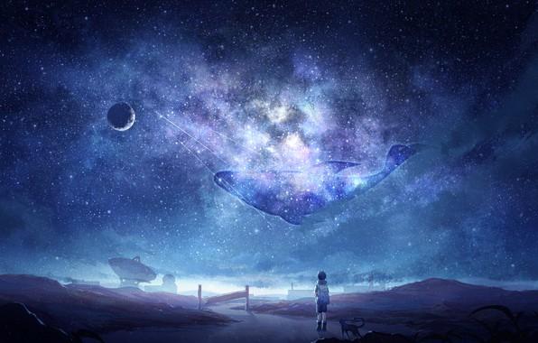 Картинка кошка, космос, мальчик, кит, млечный путь, Arsh