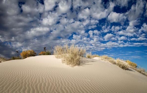 Сонник белый песок к чему снится белый песок во сне по соннику?