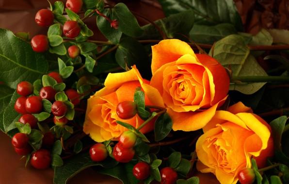 Картинка оранжевый, ягоды, розы
