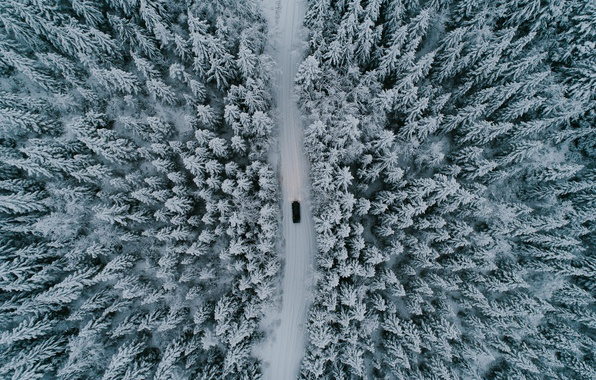 Картинка зима, дорога, машина, лес, снег, деревья, природа, вид сверху