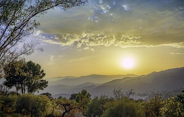 Картинка Солнце, Небо, Природа, Утро