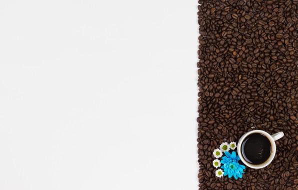 Картинка цветы, кофе, зерна, pink, flowers, cup, romantic, beans, coffee