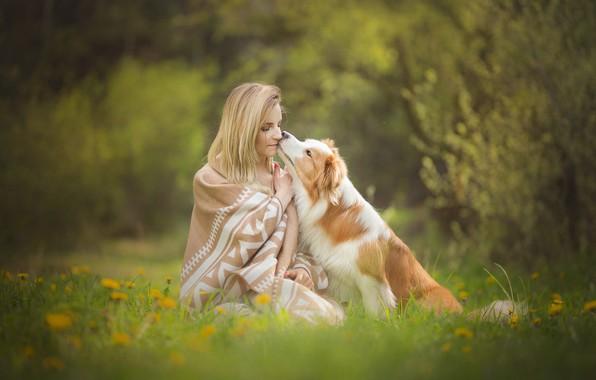 Картинка трава, девушка, цветы, настроение, собака, весна, дружба, плед, одуванчики, друзья, лужайка, боке