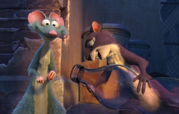 Картинка бутылка, мультфильм, зверьки, персонажи, The Nut Job 2