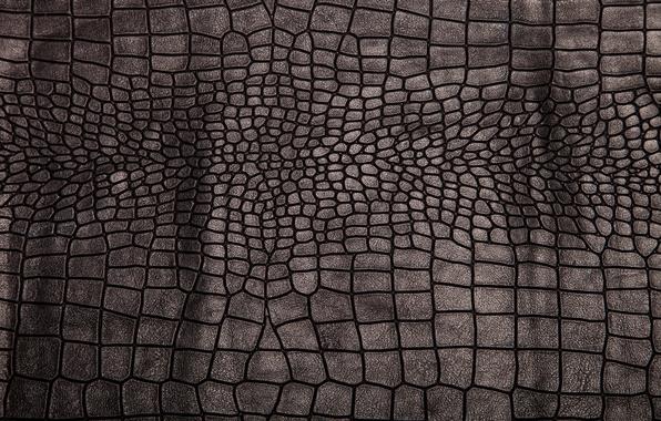 Картинка кожа, black, texture, background, leather, crocodile skin