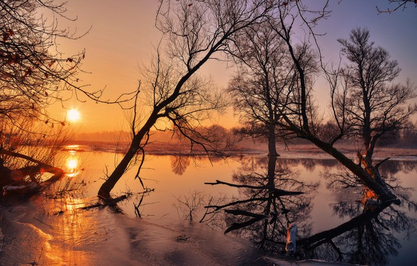 Картинка солнце, деревья, река, лёд