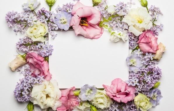 Картинка цветы, розы, rose, wood, pink, flowers, beautiful, сирень, композиция, lilac, frame, floral