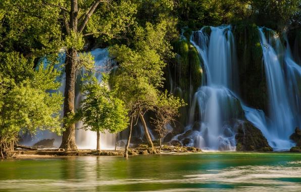 Картинка деревья, река, водопад, Босния и Герцеговина, Bosnia and Herzegovina, Kravice Falls, Trebizat river