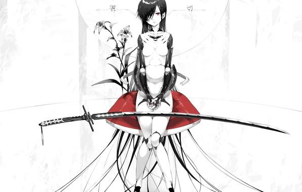 Картинка девушка, меч, аниме