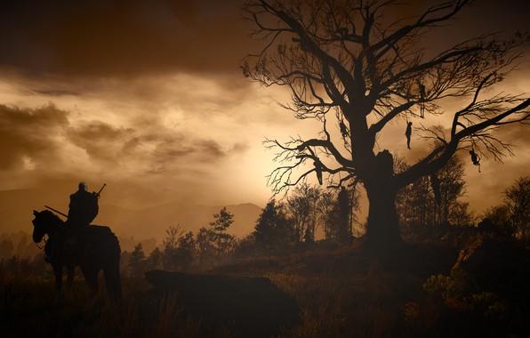 Картинка the witcher, ведьмак, дикая охота, wild hunt, the witcher 3, ведьмак 3