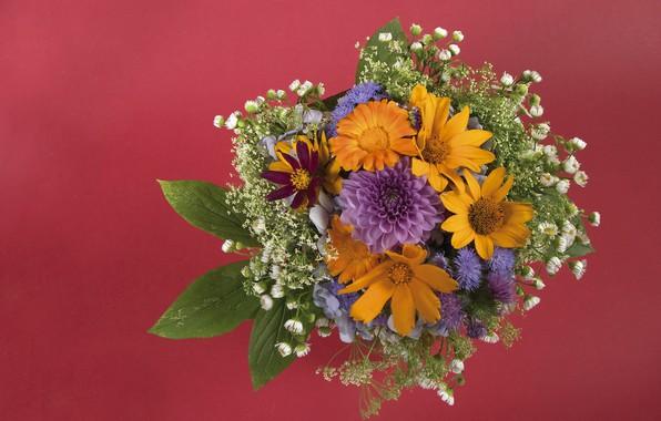 Картинка цветы, букет, желтые, оранжевые