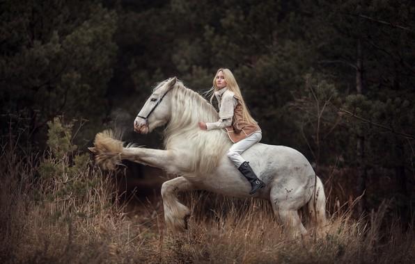 Картинка девушка, лошадь, блондинка, наездница