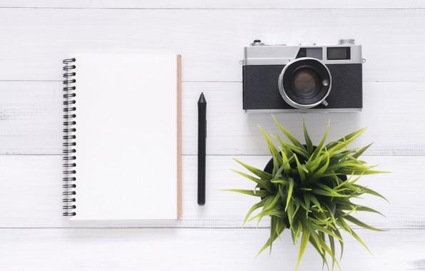 Картинка Цветок, Фотоаппарат, Блокнот, Ручка