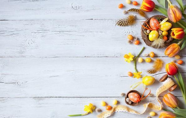 Картинка цветы, весна, colorful, Пасха, тюльпаны, wood, flowers, tulips, нарциссы, spring, Easter, eggs, decoration, Happy, яйца …