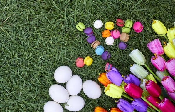 Картинка трава, цветы, яйца, весна, colorful, Пасха, тюльпаны, wood, flowers, tulips, spring, Easter, eggs, decoration, Happy, …