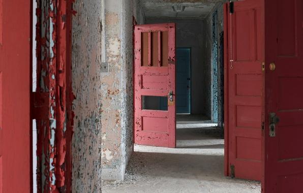 Картинка фон, цвет, двери