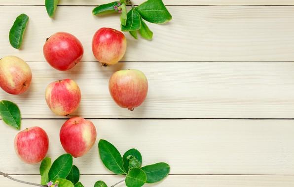 Картинка листья, ветки, яблоки, фрукт