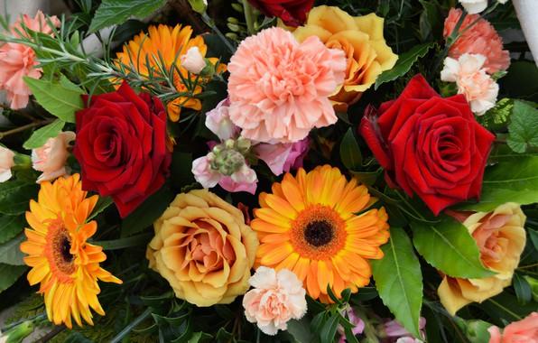 Картинка розы, букет, герберы, гвоздики