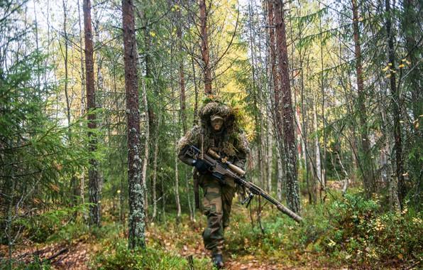 Картинка лес, снайпер, винтовка