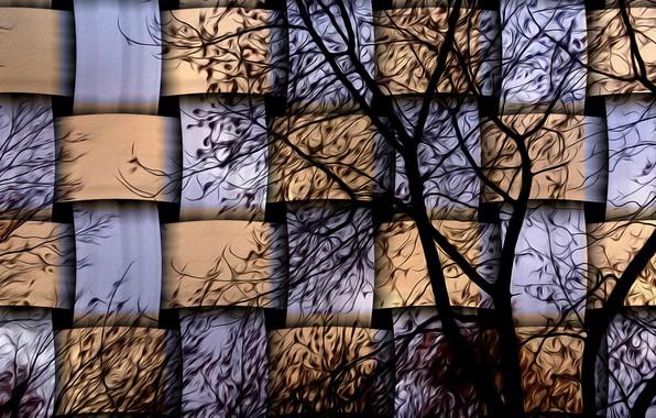 Картинка ветки, рендеринг, дерево, текстура, плетенка