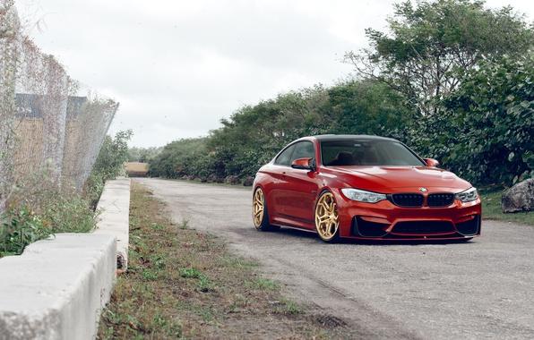 Фото обои BMW, Orange, Front, Stance, Wheels, Velos