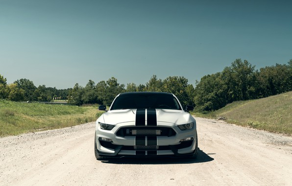 Картинка Mustang, Ford, Shelby, Front, Silver