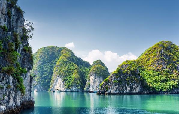 Картинка Природа, Море, Скала, Утес, Вьетнам, Бухта, Halong Bay