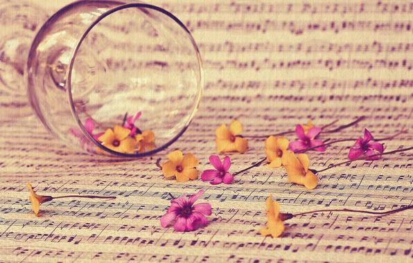 Картинка цветы, стиль, ноты, настроение, бокал, текстура