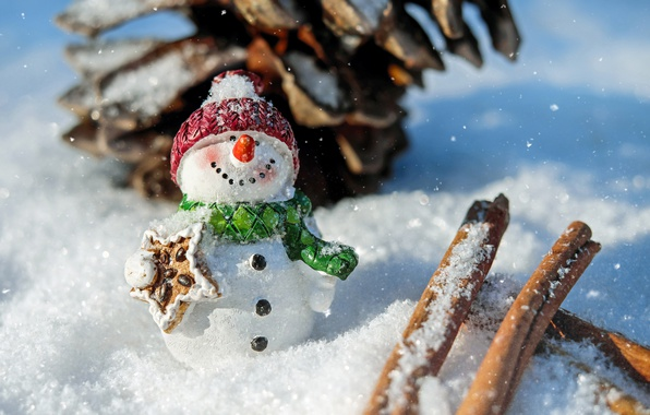 Картинка зима, снег, поза, улыбка, праздник, шапка, игрушка, новый год, рождество, шарф, снеговик, корица, шишка, фигурка, …