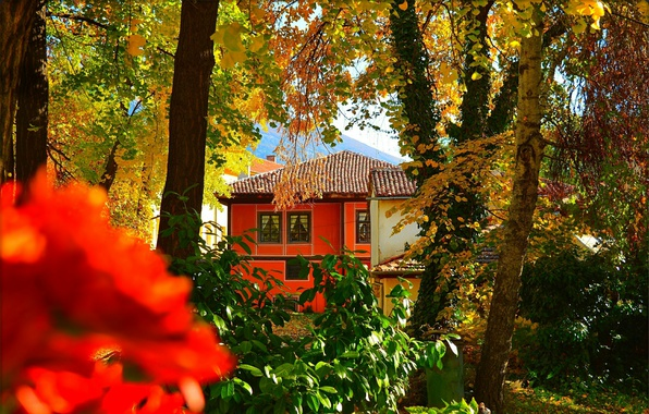 Картинка Осень, Дом, House, Fall, Autumn