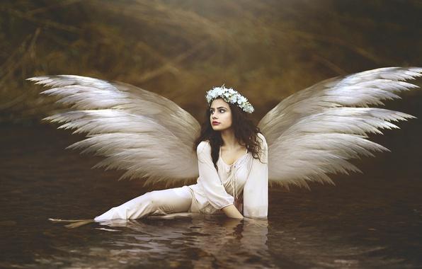 Картинка вода, девушка, цветы, крылья, ангел, брюнетка, венок