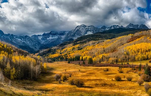 Картинка осень, лес, солнце, облака, деревья, горы, долина, США, Colorado, San Miguel
