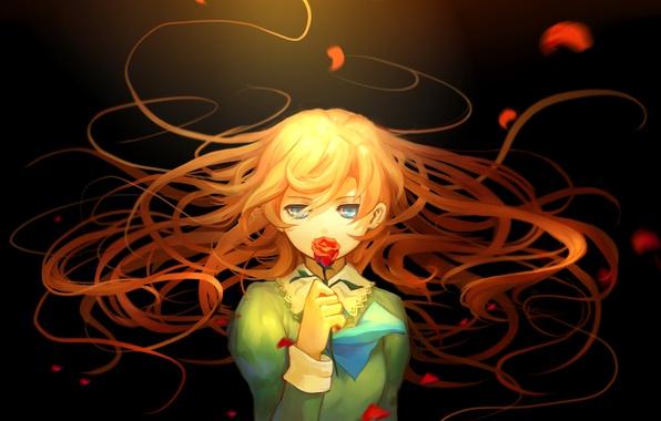 Картинка цветок, девушка, волосы, аниме, лепестки, арт, mary, aoiakamaou