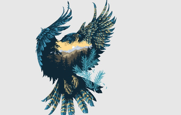 Картинка природа, фон, птица, крылья, арт, сокол