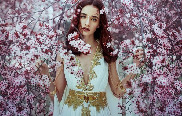 Картинка взгляд, девушка, ветки, дерево, настроение, весна, платье, цветение, цветки, Ximena Olavarria Diseñadora
