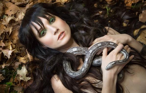 Картинка взгляд, листья, девушка, лицо, волосы, змея, макияж, Melanie Kazmercyk